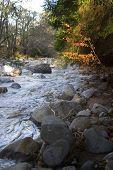 Whisky River