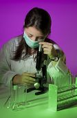 Young Chemist Research