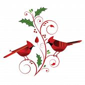 Red Cardinals and Christmas Flourish
