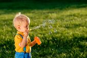 Portrait of toddler child outdoors. Rural scene with one year old baby boy blowing soap bubbles. Hea poster