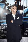 LOS ANGELES - MAR 22:  Elliot Gould arrives at the Los Angeles HBO Premiere of 'His Way' at Paramoun