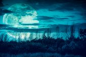Colorful Sky With Dark Cloudy And Big Moon Over Silhouette Of Trees In A Wilderness Area. poster
