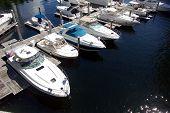 South Florida Marina