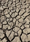 dried mud in river bed