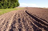 Summer End Tillage In The Farm