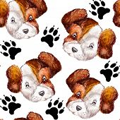 Seamless Doggy Watercolor Pattern Of Puppy Black Paw Prints And Portraits Of White With Brown Puppy  poster