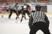 picture of referee  - Ice Hockey Referee  - JPG