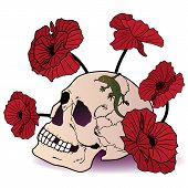 Skull, Lizard And Poppies