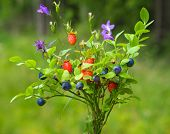 Wild Plants Bouquet, Blueberry And Wild Strawberry, Forest Posy, Wild Herbs Bouquet, Meadow Flowers  poster