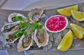 Oysters with Onion pickle