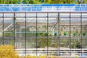 Agricultural glasshouse