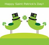 Saint Patrick's Day Birds