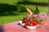 Picnic Basket Checkered With Picnic Tablecloth.picnic Basket Checkered With Picnic Tablecloth poster