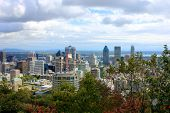 Montreal Past The Trees Of Parc Mont-royal