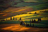 Tuscany's countryside