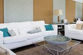 Contemporary living room with elegant designed furniture (empty interior)
