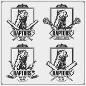 Cricket, Baseball, Lacrosse And Hockey Logos And Labels. Sport Club Emblems With Raptor Dinosaur. Pr poster