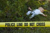 picture of dead-line  - Crime scene in the forest - JPG