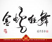 Snake Calligraphy, Chinese New Year 2013 Translation: Golden Snake Dancing and Celebrating the New Y