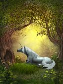 picture of unicorn  - A squirrel watches a white unicorn resting under branches of forest trees - JPG