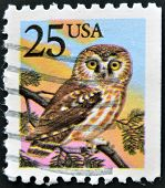 A stamp printed in the USA shows Northern Saw-whet Owl - Aegolius acadicus circa 1988