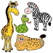 Various Zoo Animals Collection 2