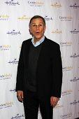 LOS ANGELES - 4 de JAN: Tony Plana llega a la fiesta de Hallmark Channel 2013 invierno TCA. en Huntingto