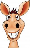 foto of wild donkey  - Vector illustration of smiling donkey head cartoon - JPG