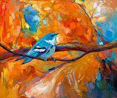 blau himmelblau Waldsänger Vogel