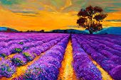 stock photo of farm landscape  - Original oil painting of lavender fields on canvas - JPG