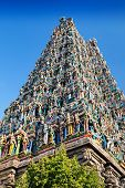 image of meenakshi  - detail of meenakshi temple in madurai india - JPG