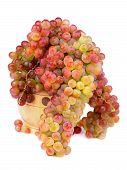 Sultana Grape