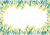 stock photo of narcissi  - Illustration of abstract beautiful yellow narcissi frame - JPG
