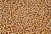 The Texture Of Coarse Dry Peas Horizontal