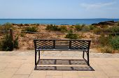 Park Bench By Ocean