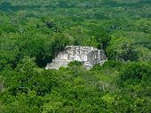 picture of mayan  - mayan temple at Calakmul a mayan archaeological site in the mexican state of Campeche - JPG