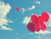 image of balloon  - Bunch of red ballons on a blue sky with one balloon escaping to be individual and free  - JPG