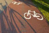 Bike path with a symbol of bike.