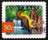 Postage Stamp Australia 2003 Yellow-bellied Sunbird, Bird