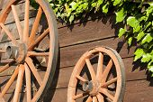 foto of stagecoach  - Carriage wheels hanging on wood board wall with green ivy - JPG