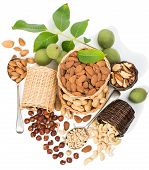 stock photo of brazil nut  - top view of assortment of nuts isolated on white background - JPG