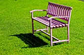The Pink Steel Bench  On Green Grass