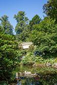 Plaster Bridge Through Trees In Garden