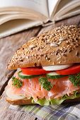 School Lunch: Sandwich With Salmon Close Up Vertical