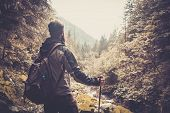 stock photo of cliffs  - Man with hiking equipment walking in mouton forest - JPG