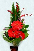 foto of gerbera daisy  - Bouquet with Daisy flower red gerbera and green leaves - JPG