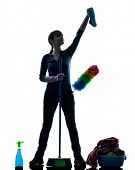 woman maid housework cleaning products silhouette