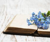 Forget-me-nots Flowers And Old Book
