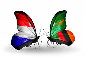 Two Butterflies With Flags On Wings As Symbol Of Relations Holland And Zambia