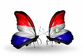 picture of holland flag  - Two butterflies with flags on wings as symbol of relations Holland and Paraguay - JPG